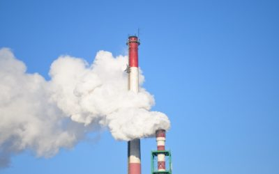 CO2 Sequestration Potential of Arundo Donax