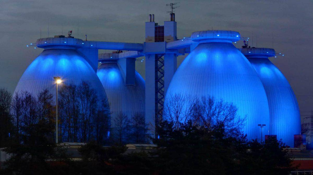arundo-donax-uses-biogas