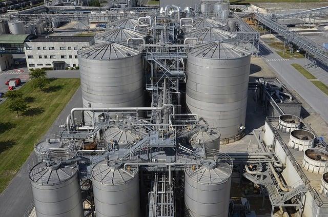 cellulosic bioethanol arundo