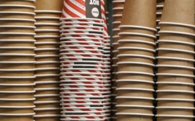 Paper from Arundo donax – A non-wood alternative for PAPER CUPS?