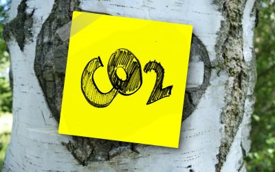 BIO PELLETSfrom Arundo donax – The CO2neutral solution