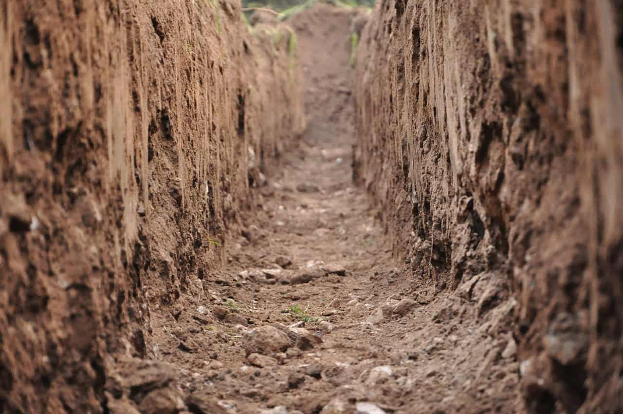 metal-contamined soils