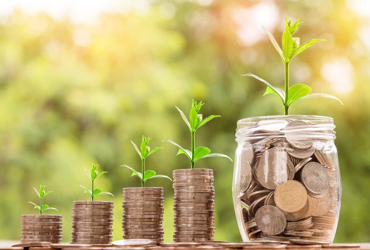 arundo-profitability5